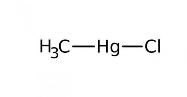 Methylquecksilber(II)-chlorid, 1000 ppm Standardlösung in Wasser, 5 mL